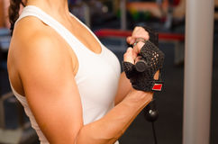 Beautiful masculine girls arms while lifting weights in gym Stock Photography