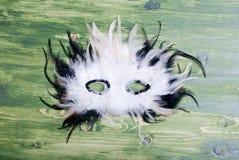 Beautiful mask of feathers on green blackboard Stock Image