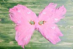 Beautiful mask of feathers on green blackboard Royalty Free Stock Photography