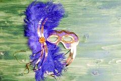 Beautiful mask of feathers on green blackboard Royalty Free Stock Photo