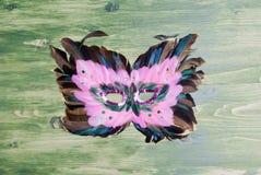 Beautiful mask of feathers on green blackboard Stock Photography