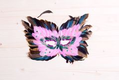 Beautiful mask of feathers light board Stock Images