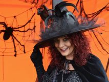 Beautiful mature brunette witch with spiders royalty free stock photography