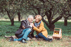 Beautiful mature couple in park Royalty Free Stock Images