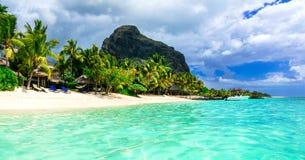 Beautiful Mauritius island. Le Morne beach Royalty Free Stock Photo
