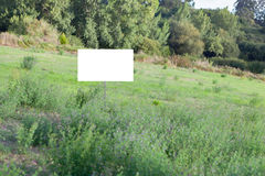 Beautiful meadow with a blank cartel. For advertising Royalty Free Stock Photo