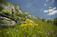 Beautiful meadow with flowers and bicycle. Biking in Flax's Meadow in Postavaru Mountains, Romania Royalty Free Stock Photos