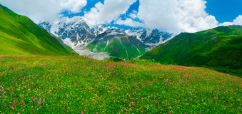 Beautiful meadow landscape near Ushguli, Svaneti, Georgia. Stock Photography