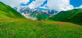 Beautiful meadow landscape near Ushguli, Svaneti, Georgia. Shkhara mountain in the background Stock Photography