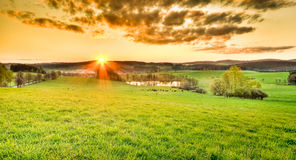 Beautiful meadow during sunset Stock Image