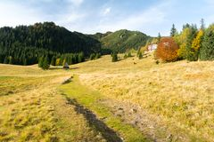 Beautiful meadow in Tatra mountains in Poland during autumn Stock Photo