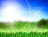 Beautiful meadow. Vector illustration of green grass field and bright blue sky Royalty Free Stock Photos
