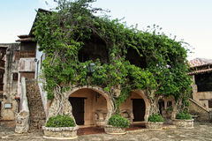 Beautiful medieval house in the Caribbean. Medieval house made of stone with green plants running on the wall inthe Dominican Republic Stock Image