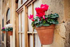 Beautiful mediterranean decoration on the small streets in the historic village Deia Royalty Free Stock Photos