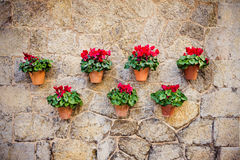 Beautiful mediterranean decoration on a wall in the historic village Valldemosa in Majorca. Creative editing to give the ancient aspect with possible noise Royalty Free Stock Image