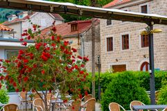 Beautiful mediterranean landscape - town Tivat, Kotor bay Boka Kotorska , Montenegro.  royalty free stock photography