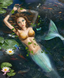 Beautiful Fantasy mermaid in lake with lilies. Fantasy mermaid in the  lake with fishes and beautiful lilies Royalty Free Stock Photos