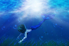 Beautiful mermaid swimming Stock Images