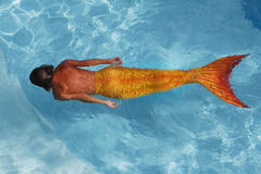 Beautiful mermaid in water. Young woman mermaid swimming in water Royalty Free Stock Photography