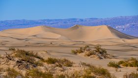 Beautiful Mesquite Sand Dunes at Death Valley California Stock Photos