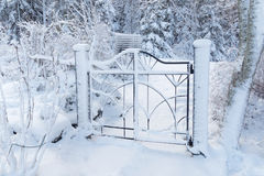 Beautiful metal gate covered with snow Stock Images