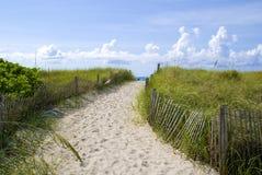 Beautiful miami beach. Beautiful scene of miami beach dunes Royalty Free Stock Images