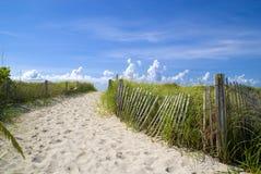 Beautiful miami beach. Beautiful mami beach sand and dunes Royalty Free Stock Images