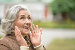 Beautiful middle-aged woman in autumn park Stock Photography