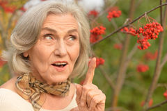 Beautiful middle-aged woman in autumn park Stock Images