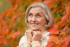 Beautiful middle-aged woman on the background of autumn leaves Stock Images