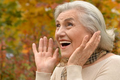 Beautiful middle-aged woman on the background of autumn leaves Stock Photos
