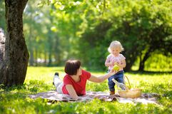 Beautiful middle aged woman and her little grandson having a picnic Stock Images