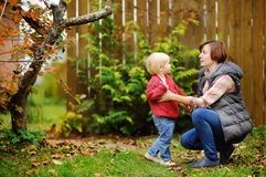 Beautiful middle aged women and her grandson in garden. Beautiful middle aged women and her adorable little grandson in domestic garden stock images