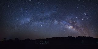 Beautiful milky way galaxy and silhouette of pine tree on a nigh stock images