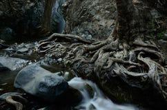 Beautiful Millomeris waterfall,Kryos Potamos river,Cyprus island royalty free stock photo