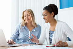 Beautiful minds work together Stock Images