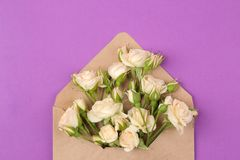 Beautiful mini roses in envelope on a bright purple background. holidays. Valentine`s Day. women`s Day. top view royalty free stock images