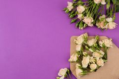 Beautiful mini roses in envelope with notepad on a bright lilac background. holidays. Valentine`s Day. women`s Day. top view. sp. Ace for text stock images