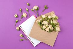 Beautiful mini roses in envelope with notepad on a bright lilac background. holidays. Valentine`s Day. women`s Day. view from ab. Ove stock photos