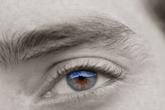 Beautiful mirror eye 2 Stock Photo