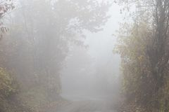 Mist at countryside Stock Images