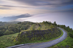 Beautiful mist flowing on  at doi inthanon chiang mai Royalty Free Stock Photography