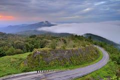 Beautiful mist flowing on  at doi inthanon chiang mai Stock Photo