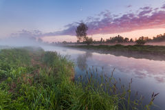 Beautiful misty dawn in the spring on the river Royalty Free Stock Photos