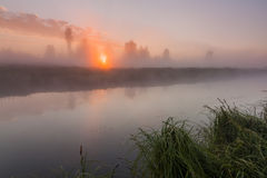 Beautiful misty dawn in the spring on the river Royalty Free Stock Photo