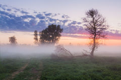 Beautiful misty dawn in the spring on the river Royalty Free Stock Images