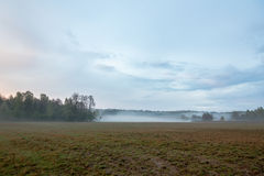 Beautiful misty evening. Beautiful meadow on a misty evening Stock Photos