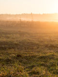 Beautiful misty meadow in the morning frost Royalty Free Stock Photography