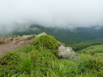 Beautiful misty mountains. Landscape after the rain Royalty Free Stock Photography