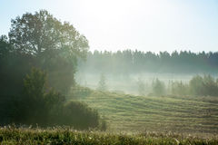 Beautiful misty sunrise landscape Royalty Free Stock Image